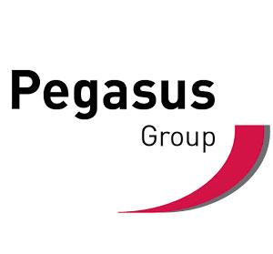 Pegasus Group